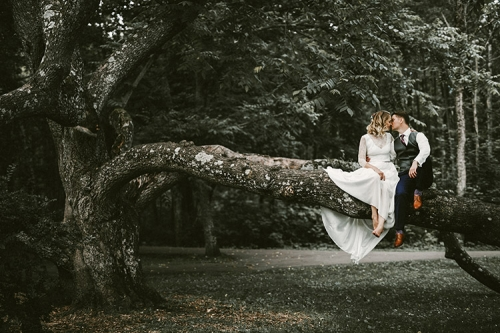 skūpsts uz koka zara