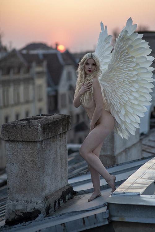 ar spārniem uz jumta saulrieta laikā