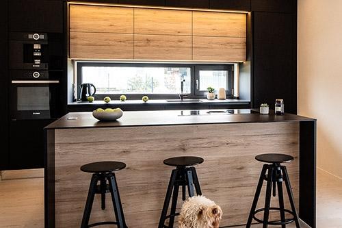 mūsdienīga virtuve ar suni