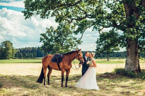 kāzu bilde pie zirga
