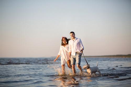 pastaiga ar suni pa ūdeni pie jūras