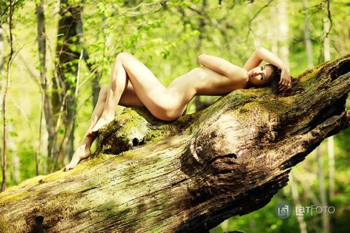 plika brunete mežā