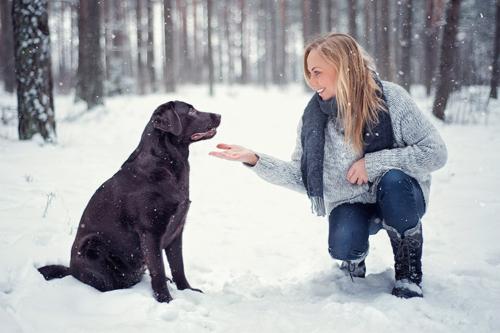 sieviete ar suni mežā, ziemas laikā