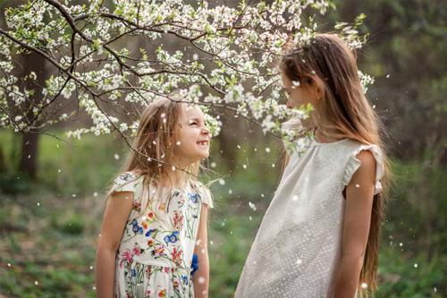 bērni spēlējas zem ziedoša ķirša