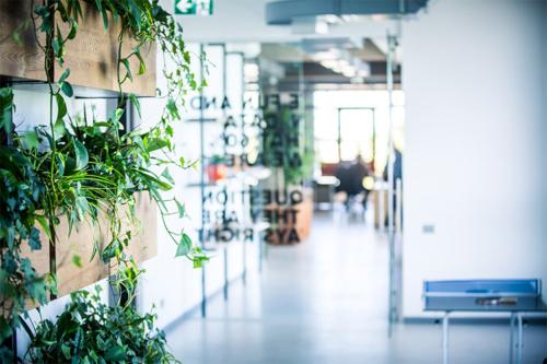 moderns birojs ar telpaugiem