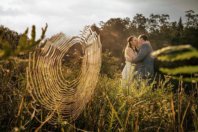 ideja kāzu fotografēšanai - lauks ar zirnekļu tīklu