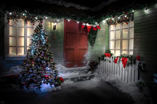 Mārītes Kārkliņas fotostudija Ziemassvētku noskaņās